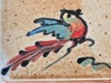 Vogel bunt shino