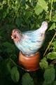 Zaun - Vogel blau