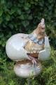 Hahn schlüpft aus dem Ei